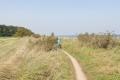 Der Weg Richtung Flensburg wird kurzzeitig richtig abenteuerlich und romantisch und später vor allem: Krass hügelig!