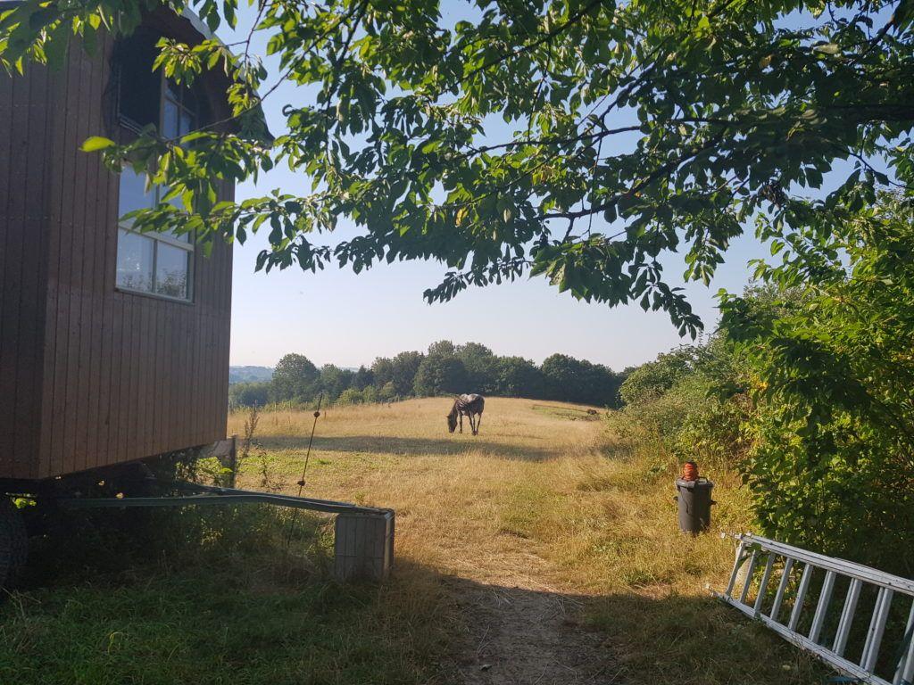 MT20 Klein Hundorf, Bauwagen mit Pferd