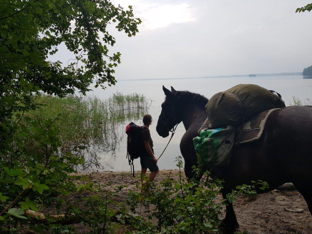 MT20 Gunta mit Pferd am Schweriner See
