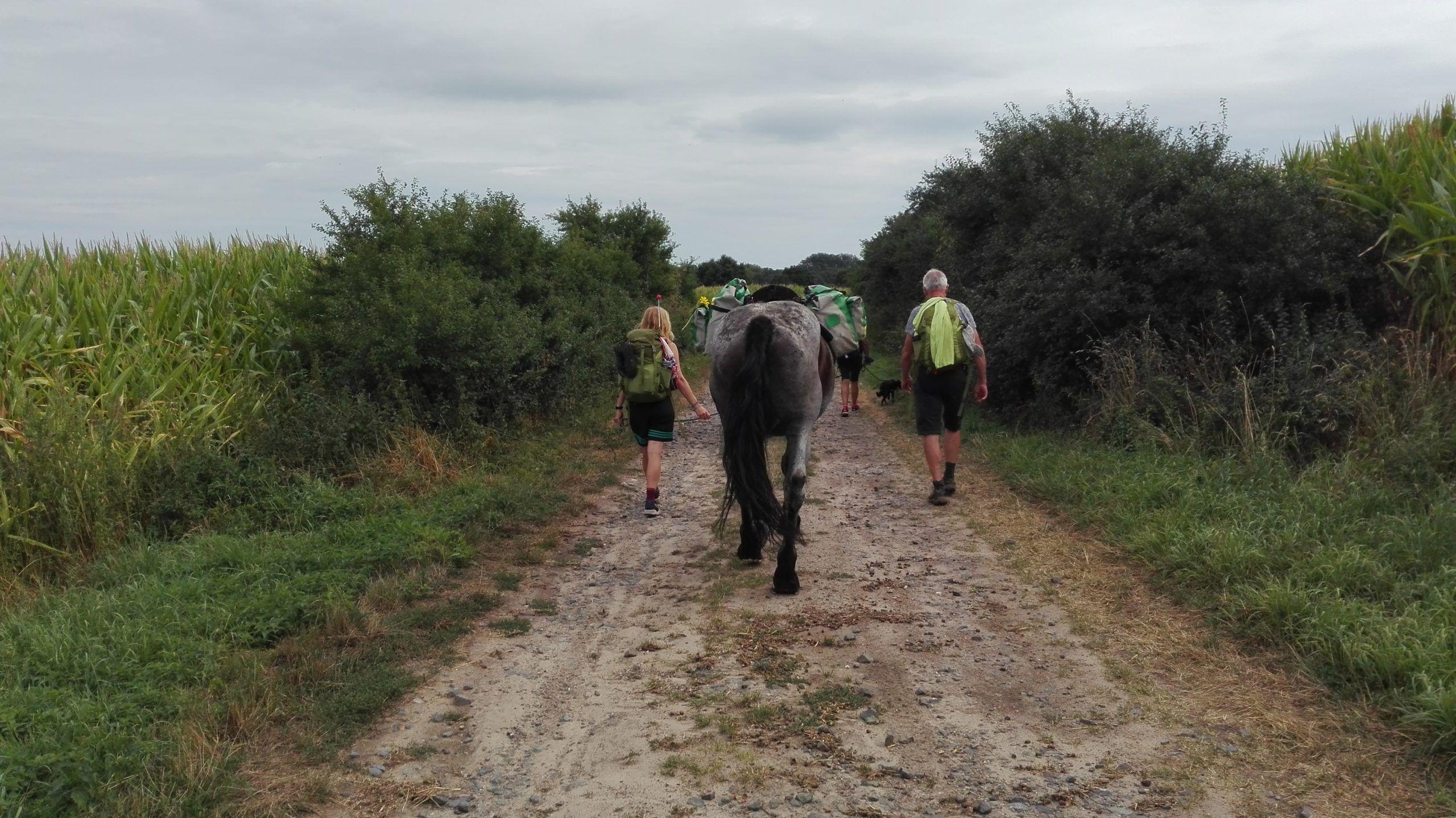 Wanderetappe mit Pferden
