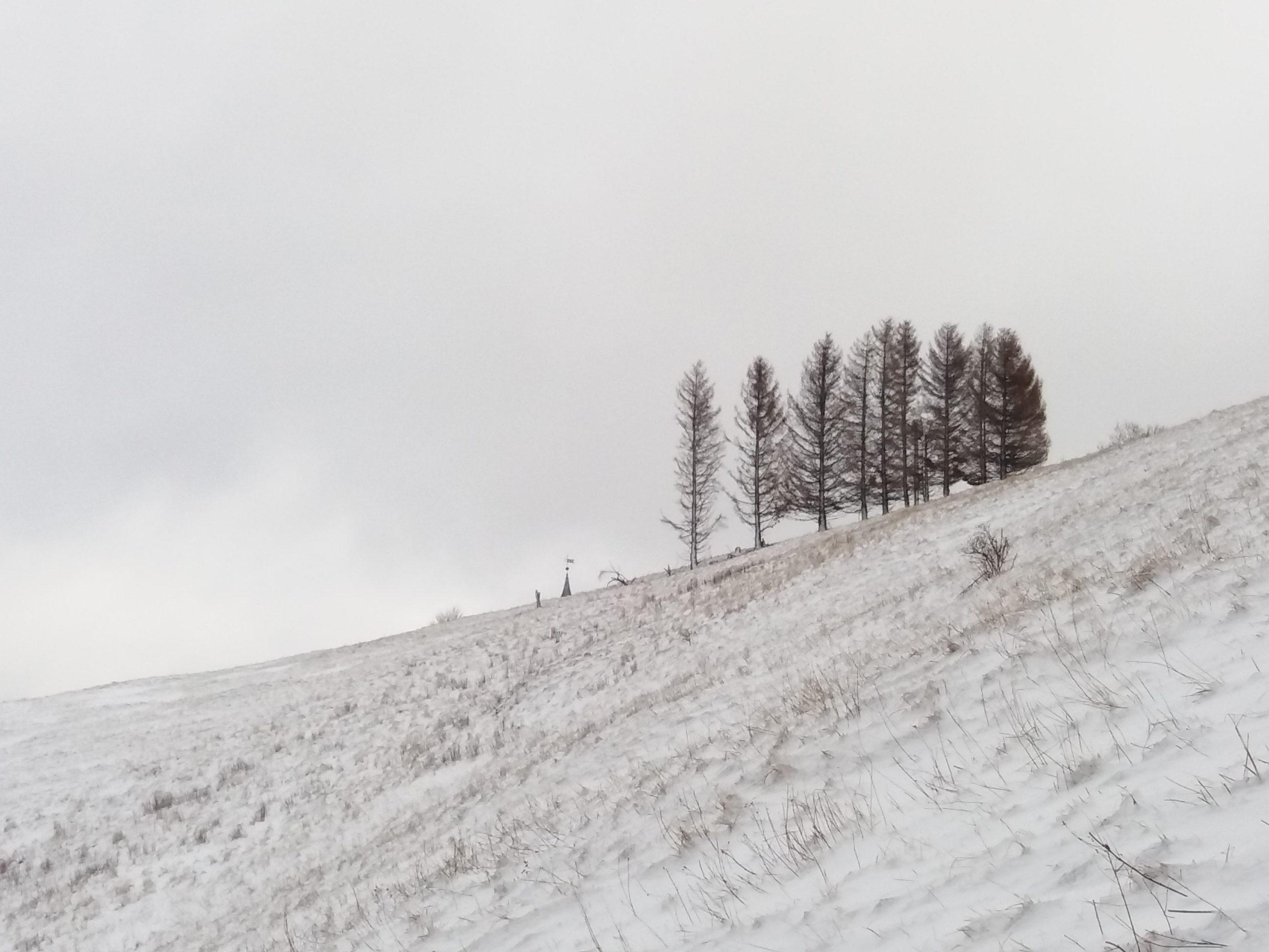 Winterlandschaft Harz
