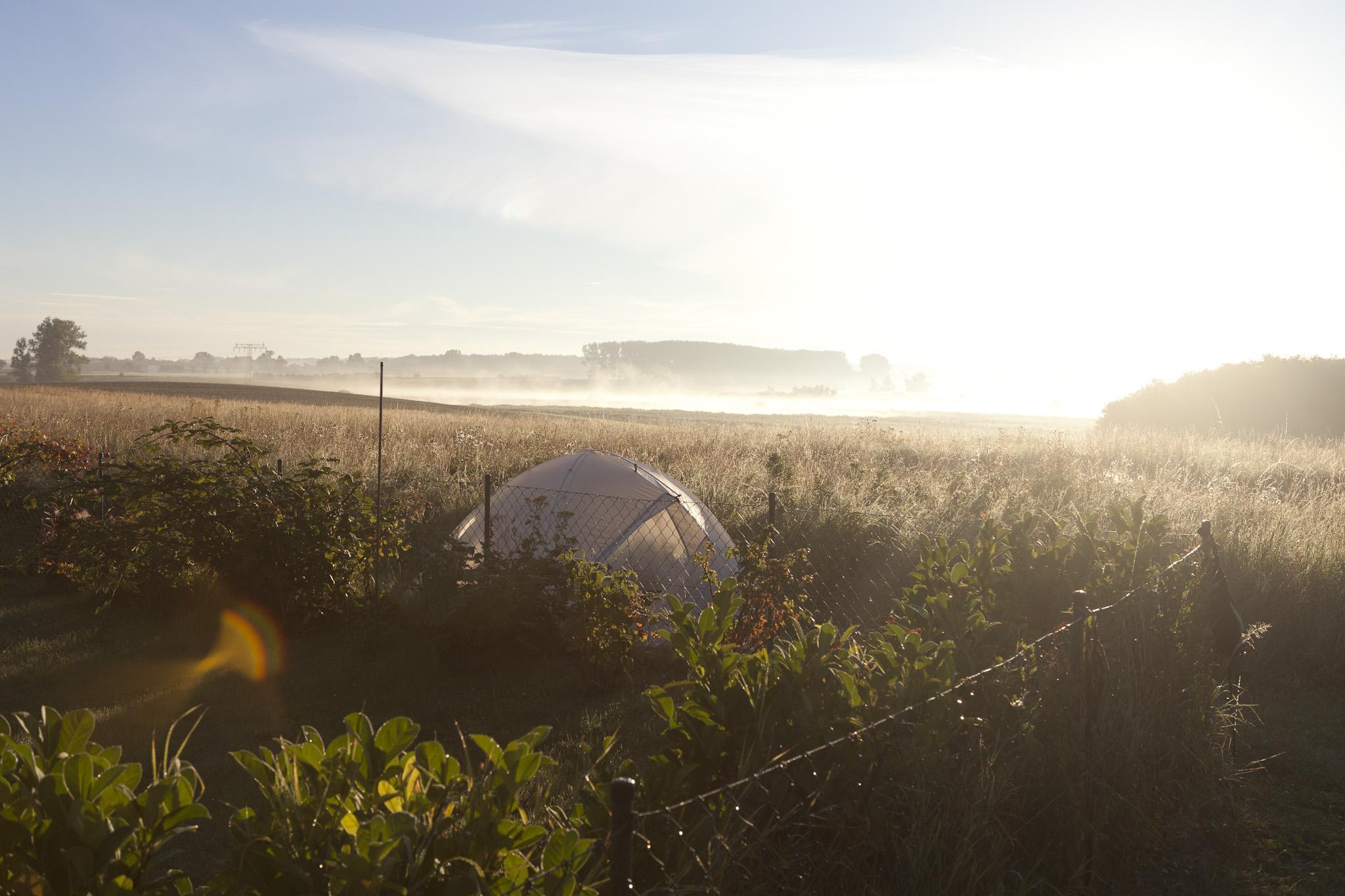 Zelt auf Feld während Sonnenaufgang
