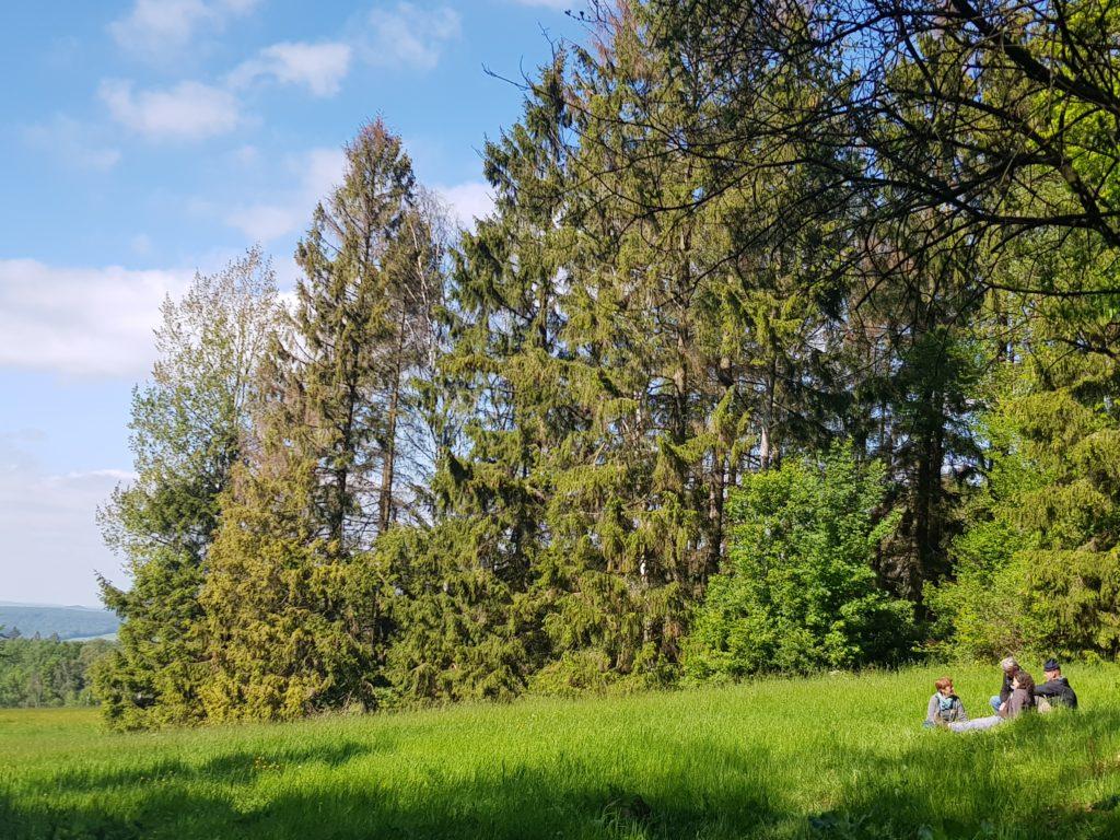 Natur pur beim MIT-MACH-WOCHENENDE in Kassel